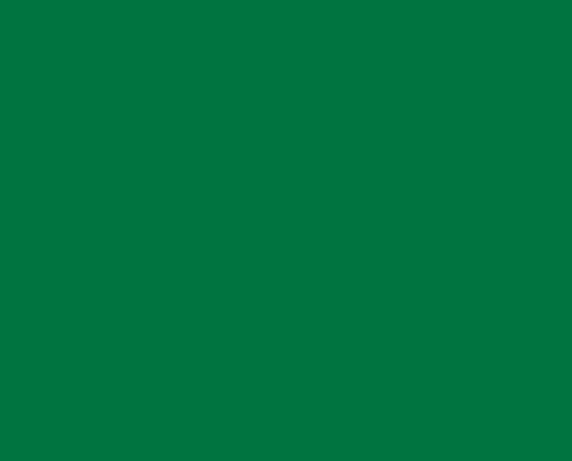 visual_logo